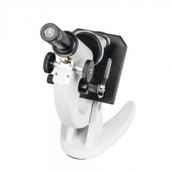 Додаткове зображення Мікроскоп SIGETA Elementary 40x-400x №6