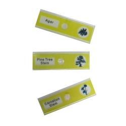 Додаткове зображення Набір мікропрепаратів SIGETA ENTRANCE Життєві цикли рослин (12 шт.) №3